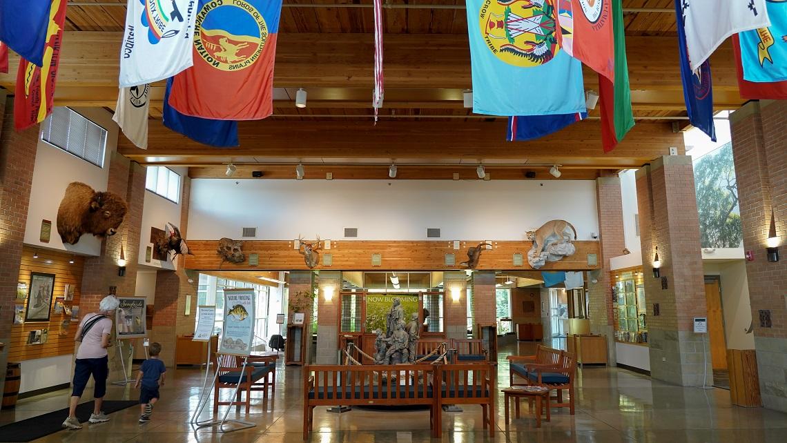 Anita B Gorman Center