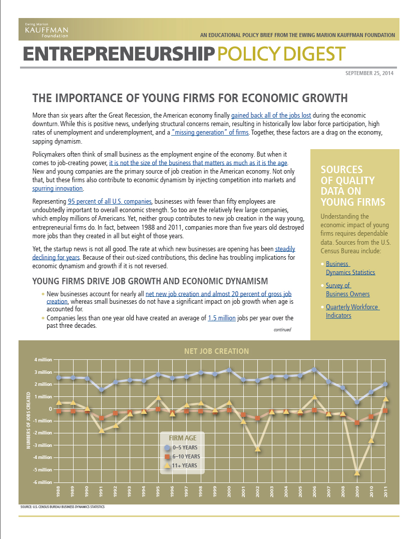"Read ""The Importance of Young Firms for Economic Growth"" (Updated September 2015)"