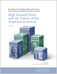 Read High Growth Firms and the Future of the American Economy