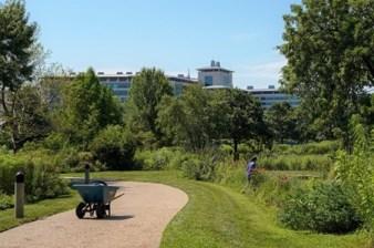 Kauffman Legacy Garden