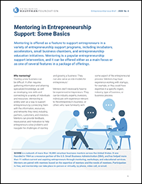 Mentoring in Entrepreneurship Support: Some Basics | Entrepreneurship Issue Brief, No. 4